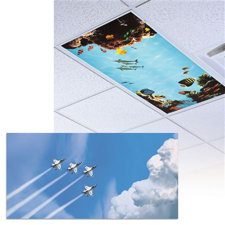 Jets Light Panel 1/Each