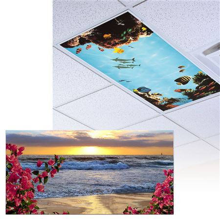Bougainvilla At The Beach Light Panel