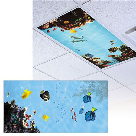 EXPanded Oceanview Light Panel