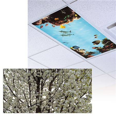 Full Bloom Light Panel