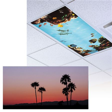 SuMMer Palms Light Panel