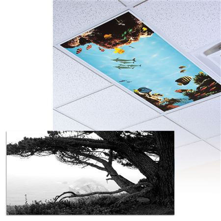 Black And White Ocean Light Panel 1/Each