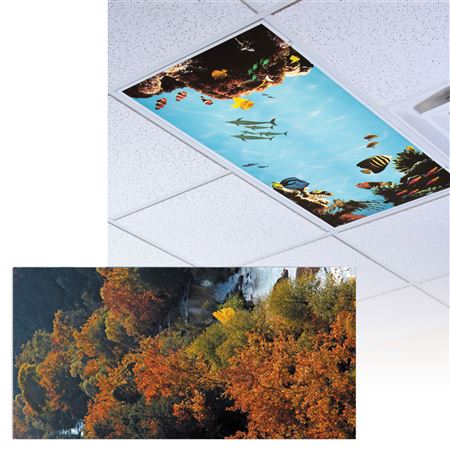 Fall In Oak Creek Light Panel
