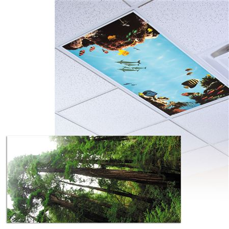 Hiking Path Light Panel