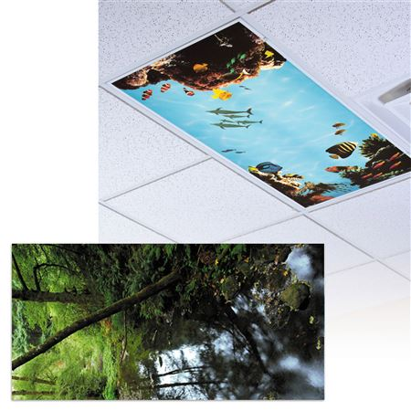 Fishing Stream Light Panel