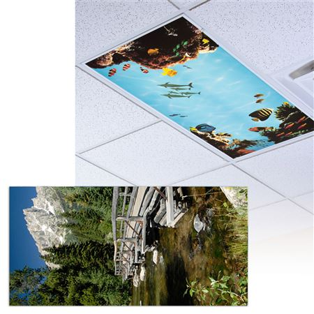 Grand Tetons Light Panel 1/Each