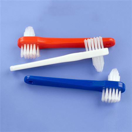 Denture Brushes