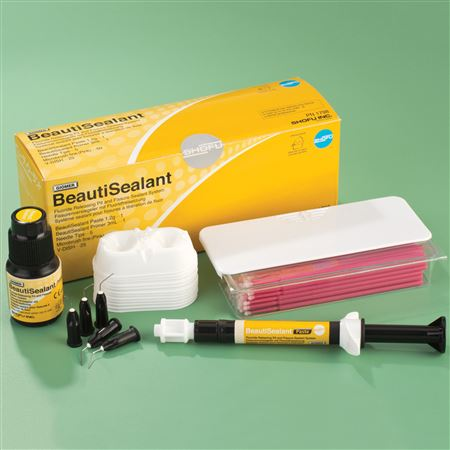 Beautisealant Kit