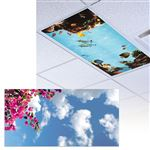 Bougainvillea Light Panel