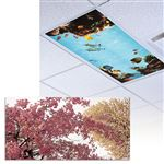 Cherry Tree Light Panel