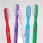 Translucent POH Adult Toothbrushes - Bulk